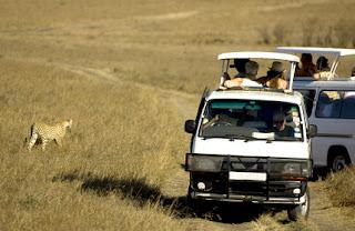 Vacanze invernali 2016 - Safari in Kenya