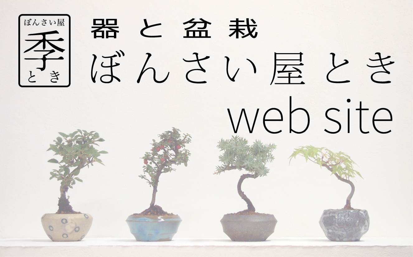 web site リニューアル!