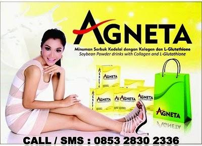 Tambah Penghasilan Anda Dengan Menjadi Agen Agneta