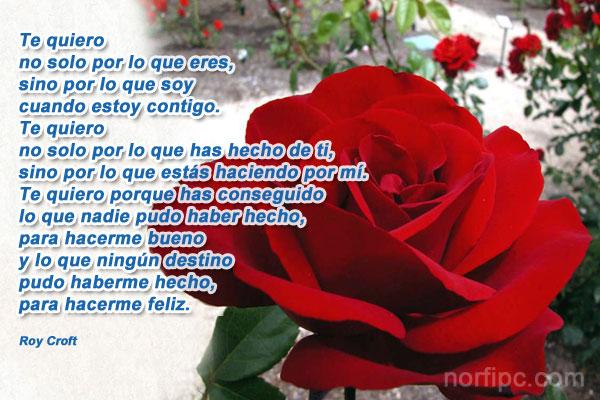 Poemas De Te Quiero