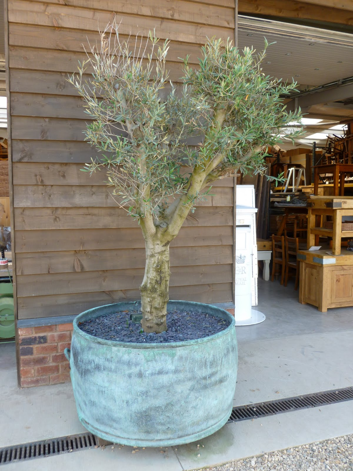 The drill hall emporium trend alert antique tin and for Tin tub planters