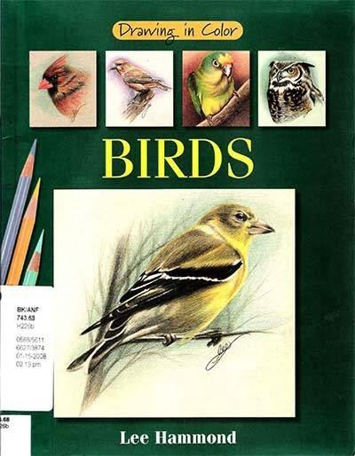 Buku Belajar Menggambar dan Mewarnai Burung