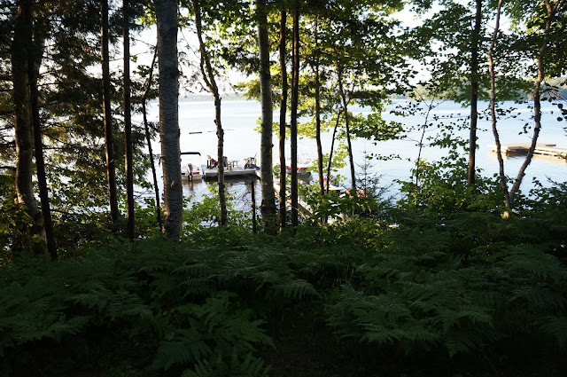 View of dock, muskoka chairs and Lake, from behind trees