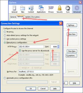 Browser-Settings