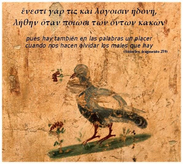 Sophocles scripsit
