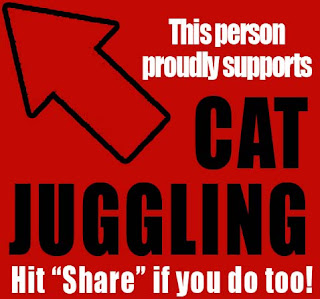 cat juggling