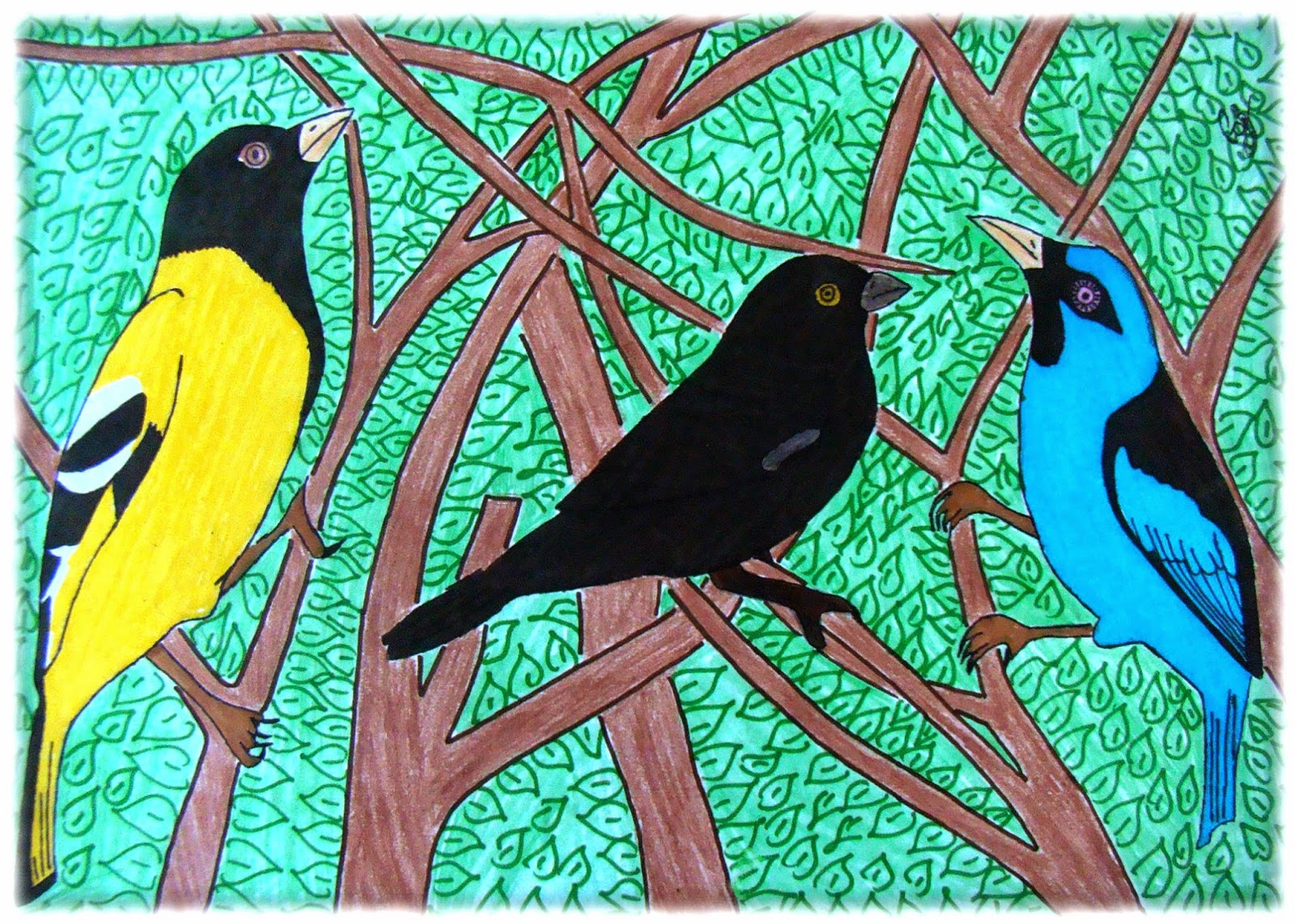 'Pássaros radiantes' Gabriel de Brito Honório, 14 anos