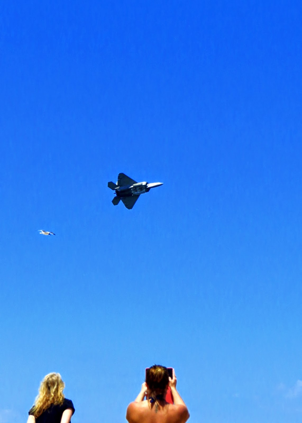 raptor, air show, air force, planes, jets