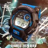 DG 2079 Original