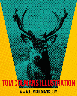 Tom Colmans Illustration | Deer Poster