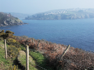 Polruan and where the River Fowey joins the sea