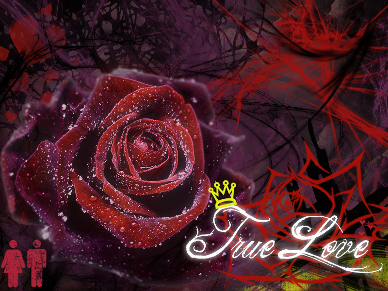 true love wallpapers free download - photo #2