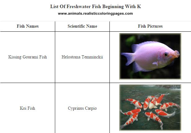 List of freshwater fish beginning with K