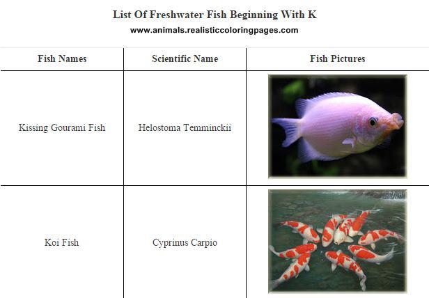 Freshwater fish - Identification Of Freshwater Fish | Farming Plan