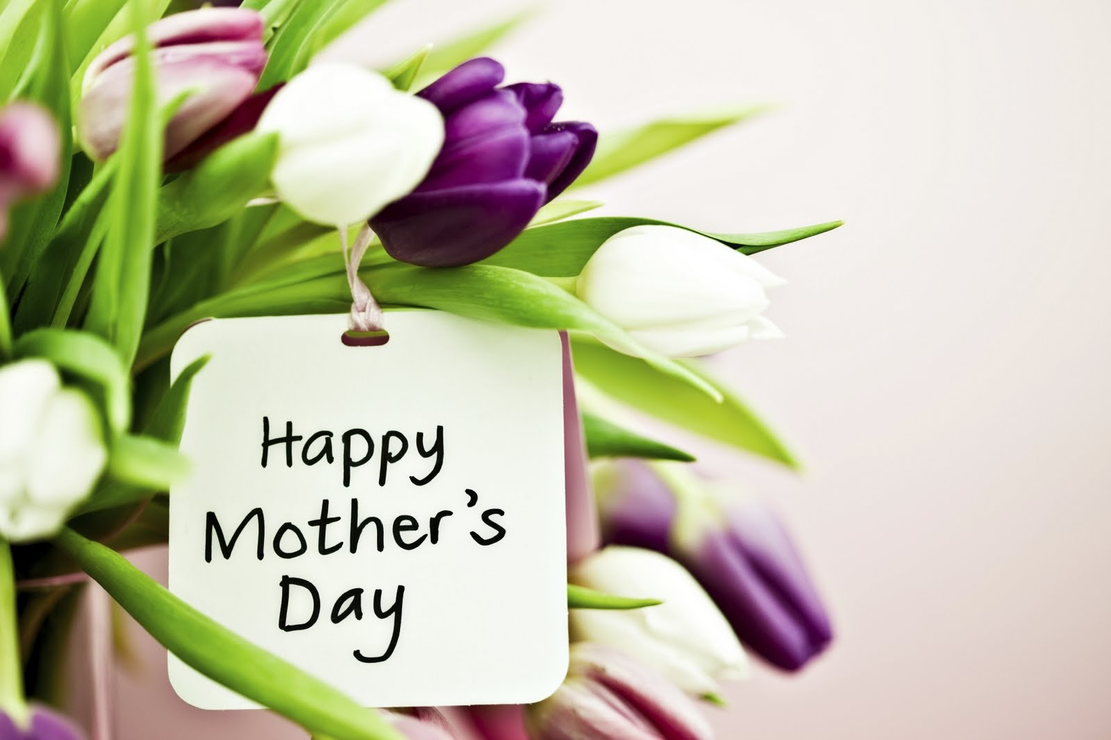 Send Mothers Day Bouquet For Praising The Efforts Of