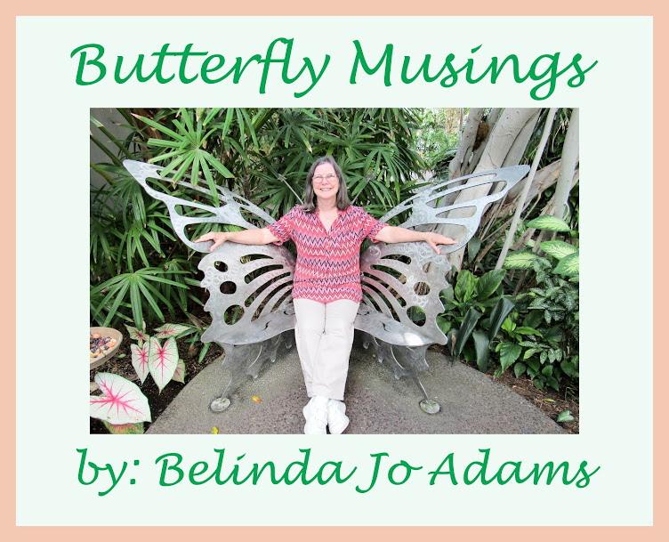 Butterfly Musings