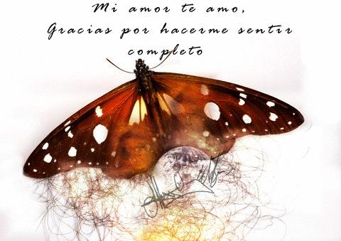 imágenes con frases de amor con mariposas