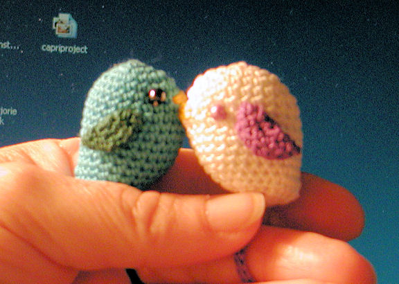 Welcome To The Nest Bird Book Thong Crochet Pattern