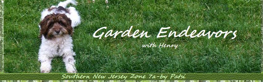Garden Endeavors