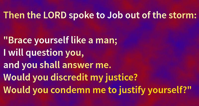 Job 40:7-8, NIV