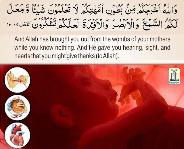 allah is the best creator The creator, the sustainer, the originator (allah) knows best (3,211)the: and also the nourisher, the cherisher, the controller (understanding islam through the english language) kindle edition.