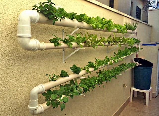 horta e jardim vertical : horta e jardim vertical: Culinária, Gastronomia e Receitas: Como Fazer uma Horta Hidropônica