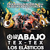 Los de Abajo + Los Elásticos y Tex Tex en Alameda del Sur, Delegacion Coyoacan Miércoles 10 de Diciembre 2014