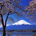 Lukisan Kapur Buatan Siswa Jepang yang Keren