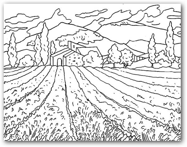 Desenhos Para Colorir Winnie Pooh E Seus Amigos also Dibujos Para Colorear De Dumbo furthermore Dibuja Y Colorear Sofia moreover 8 besides Dibujos insectos imprimir colorear. on pintar dibujos de disney