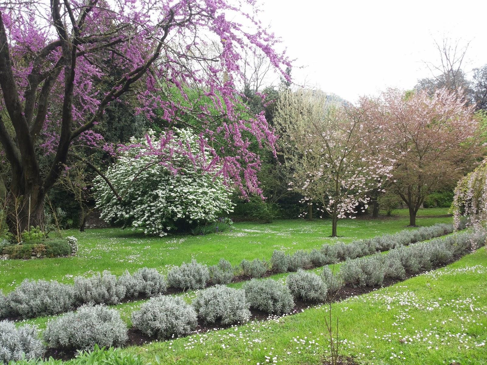 Viaggio serena i giardini di ninfa - I giardini di ninfa ...