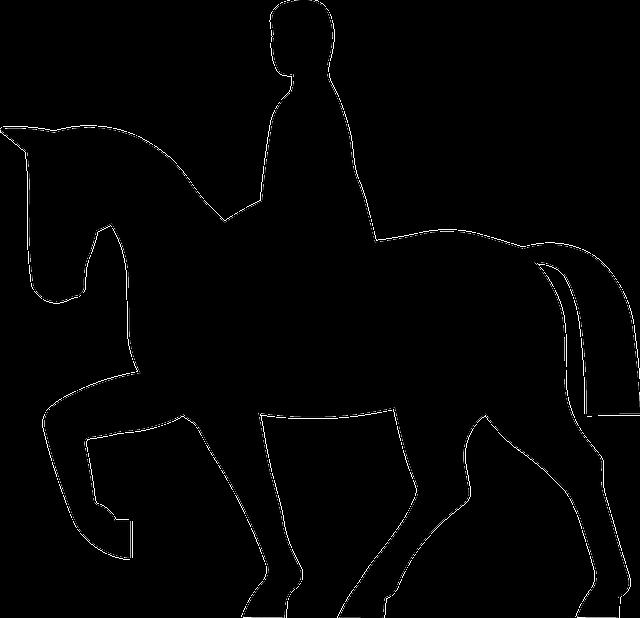 significado carta cavaleiro lenormand