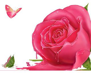 hinh nen hoa hong cho may tinh