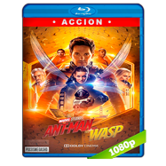 Ant-Man and The Wasp. El hombre hormiga y La avispa (2018) BRRip 1080p Audio Dual Latino-Ingles