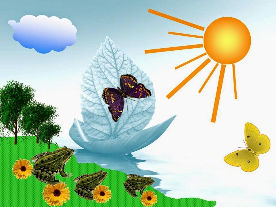 Интересные Факты О Солнце Презентация