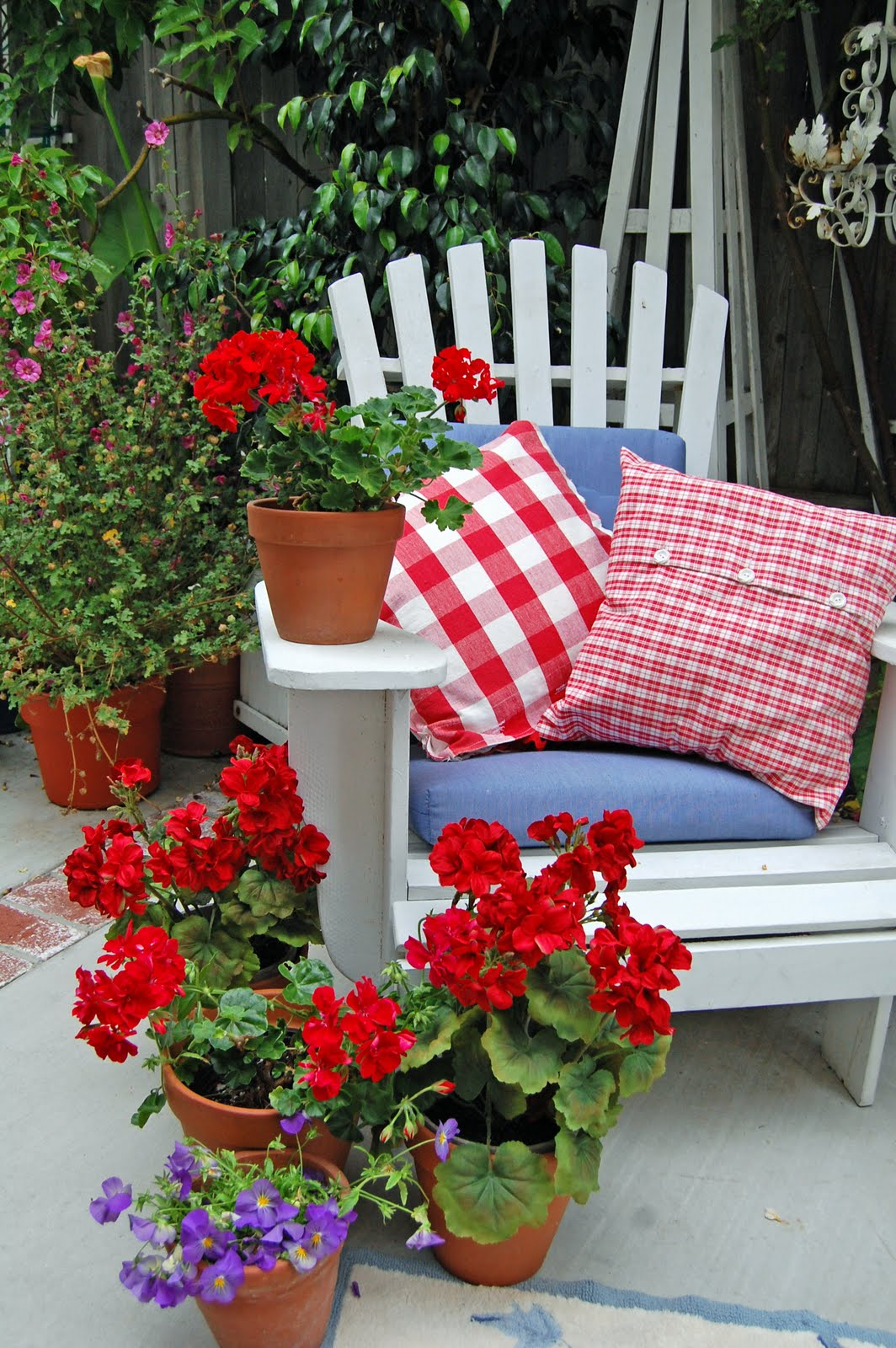 In remembrance and celebration on memorial day fox hollow cottage - Care geraniums flourishing balcony porch ...