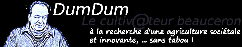 DumDum, le cultivateur Beauceron