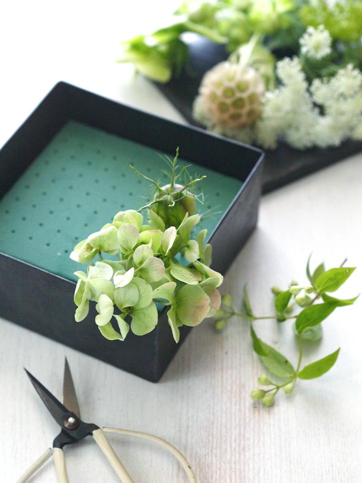 Baum Kuchen A Gift Of Fresh Green
