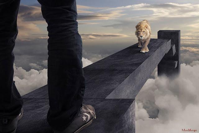 Foto Keren : Kombinasi Foto yang Mengagumkan