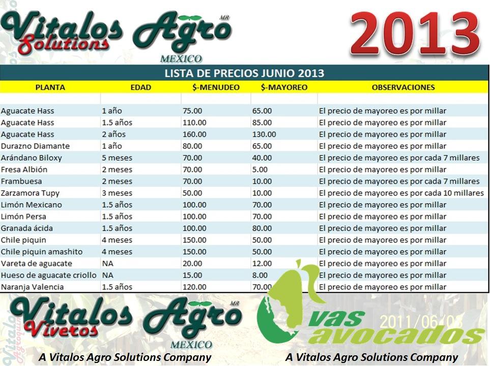 El aguacatero plagas y enfermedades lista de precios for Plantas precios viveros