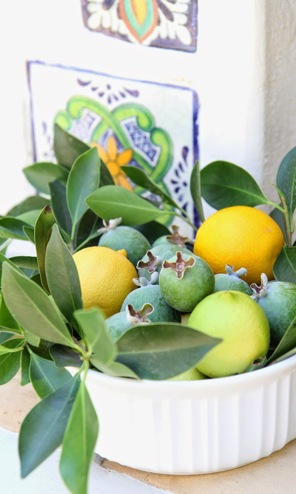 Spanish tiles: Simple Summer Fruit Bowl; Nora's Nest
