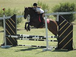 El caballo no ha de ser un esclavo que lleva a su amo