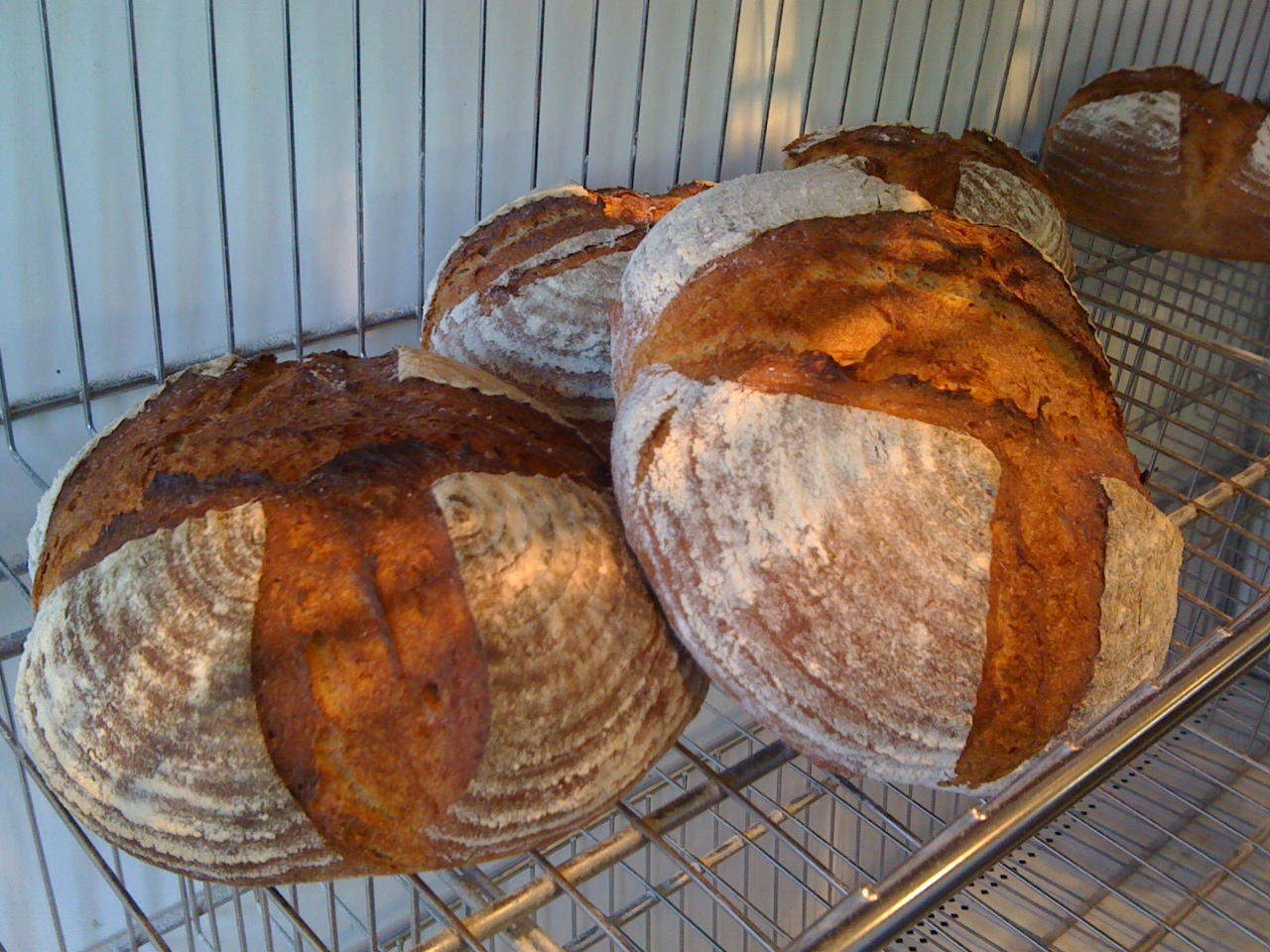 Bakery Normand: Breads