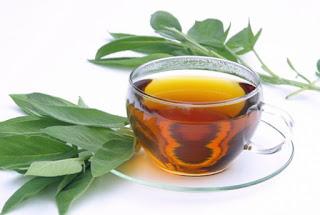 Te de Salvia Para Hiperhidrosis