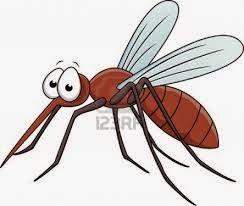 bagaimana cara kerja nyamuk dalam mengigit