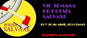 VII SEMANA DE POESÍA SALVAXE