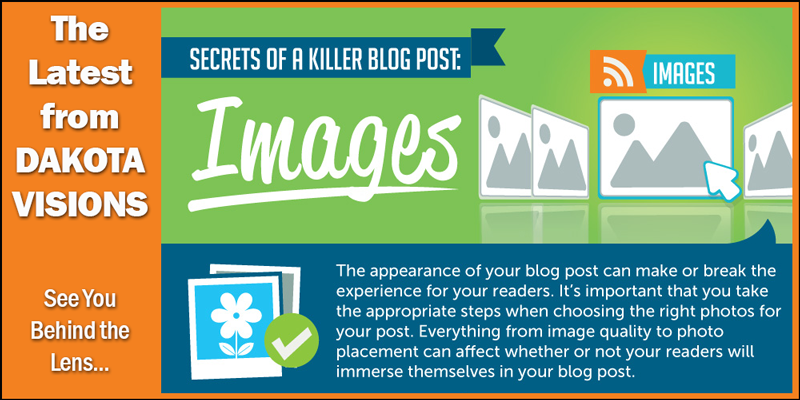 The Latest from Dakota Visions: Secrets of a Killer Blog Post IV - Images #Infographic