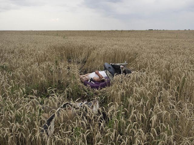 World Press Photo Contest 2015, Noticias de último minuto, Spot News, Crime without punishment, Jérôme Sessini