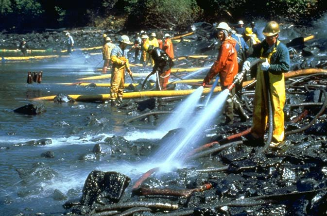 the effects of the exxon valdez oil spill Twenty-five years after the exxon valdez oil spill set off one of the most devastating environmental disasters in us history, scientists say that a surprising amount of oil still clings to.