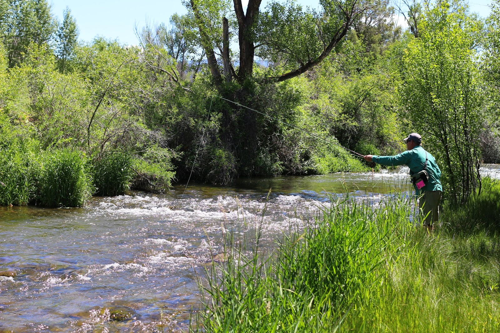 Roaring+Fork+High+Water+Photo+in+Colorado+with+Jay+Scott+Outdoors+4.JPG