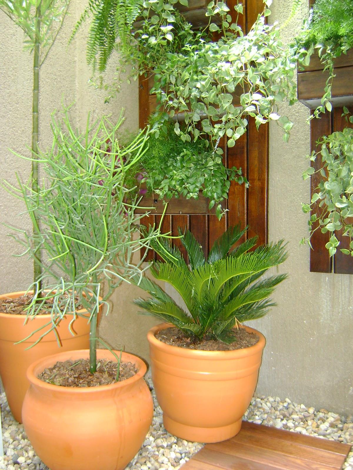 aplicacao deck jardim:Seixos Vasos De Parede LanÇamentos RÚsticos  #A76424 1200 1600